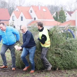 Geen kerstboomverbranding Stroom-Esch