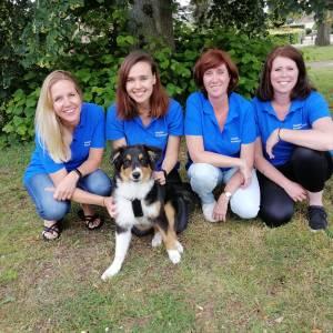 Nieuwe hondenschool Maddies gaat voor maatwerk