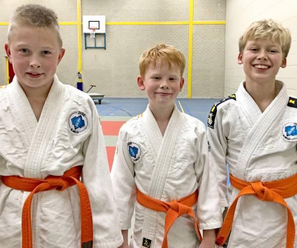 Wierdense judoka's strijden op Judocompetitie van het Oosten
