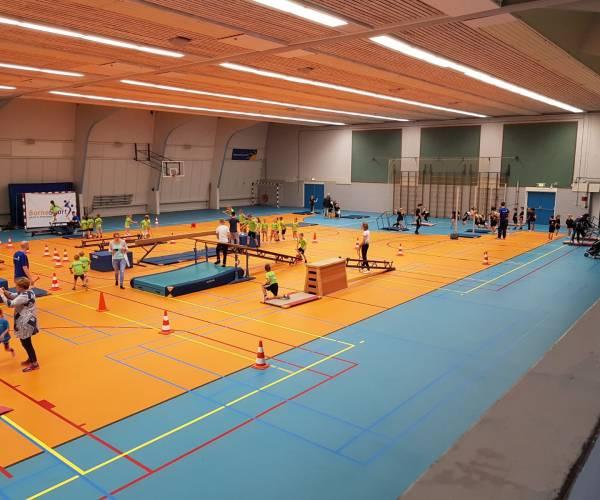 Turnsportdag voor groepen 3 en 4 in Sporthal 't Wooldrik