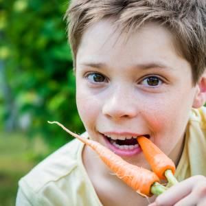 Gratis groentezaad voor scholen en kinderopvang uit Borne