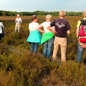 Wandeling 'Struinen over de heide en langs de cirkels van Jannink' Dal van de Mosbeek