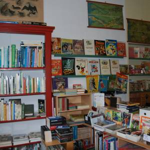 Tweedehands boekhandel Pepyn wordt binnenkort 35 jaar